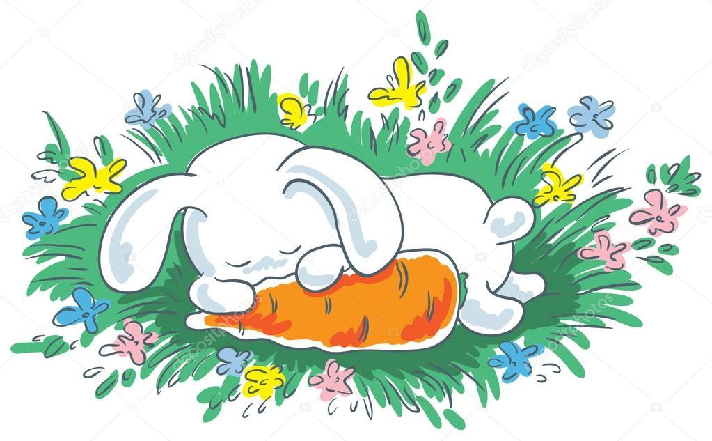 Спящий зайчик картинка для детей