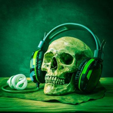 skull headphone