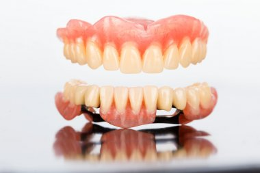 Upper and lower dental prosthesis