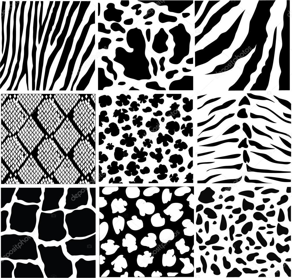 Animal skin — Stock Vector © lilac-design #16932167