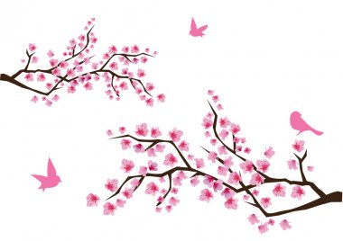 Vector cherry blossom stock vector