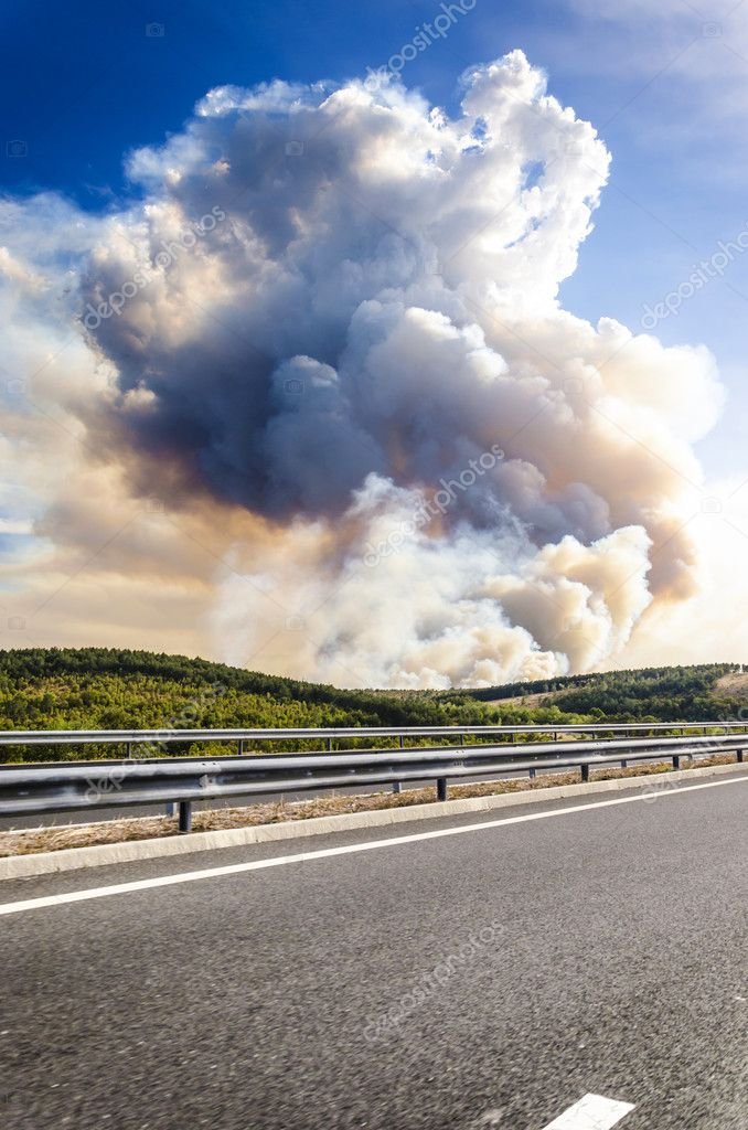 Forrest fire smoke