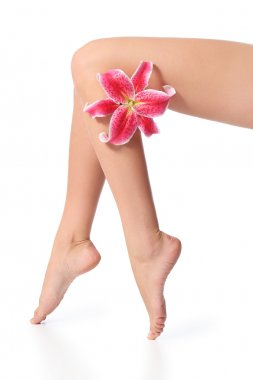 Smooth and waxed perfect woman legs with a flower