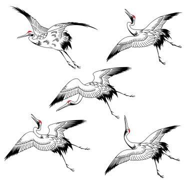 A Japanese crane