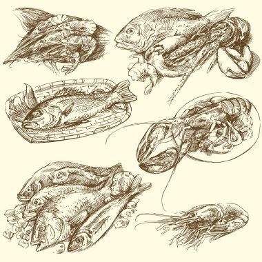Sea food, fish collection