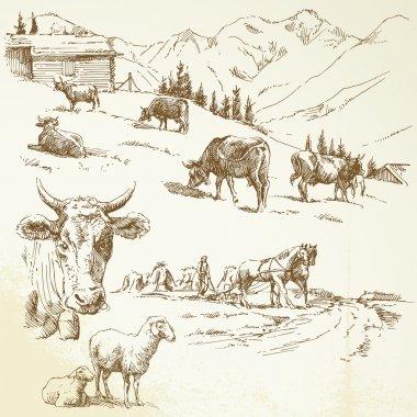 Hand drawn farm