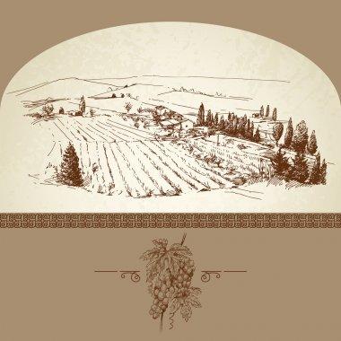 Wine label, hand drawn vineyard