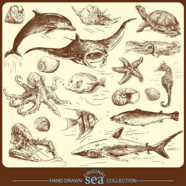 Big sea collection - original hand drawn set