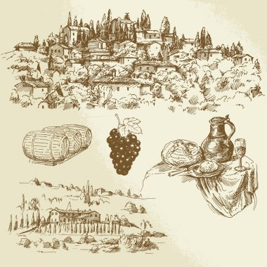Italian rural landscape - vineyard