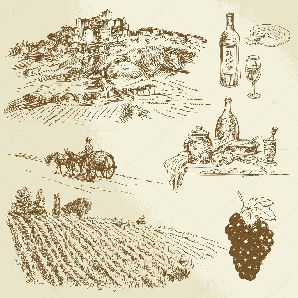 italian landscape, vineyard - hand drawn illustration