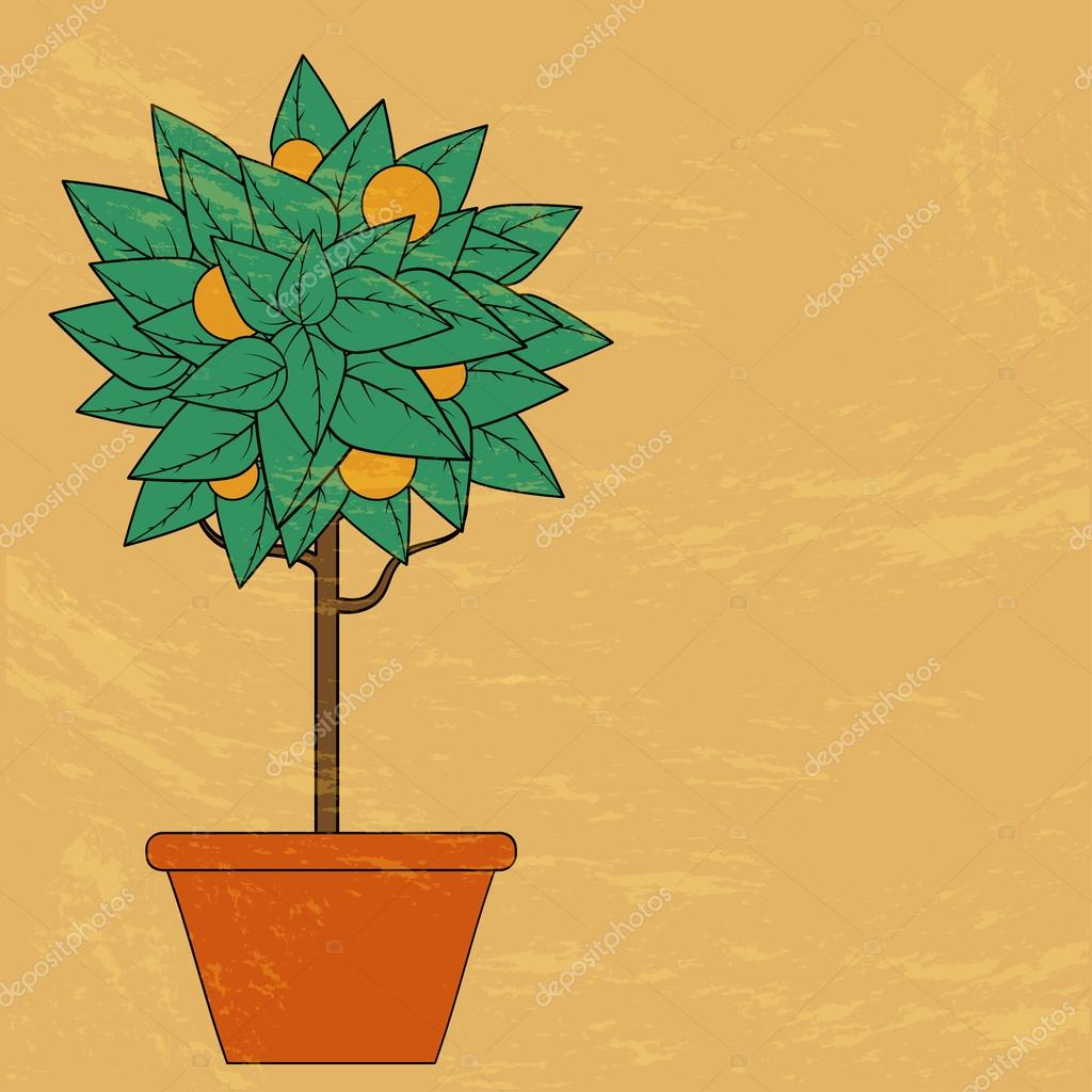 Tree with green leaves and fruit in a flower pot in red on an or