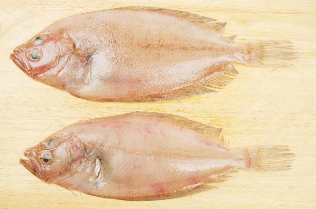 Pesce Su Un Bordo Piatto Unico Rombo Giallo Foto Stock