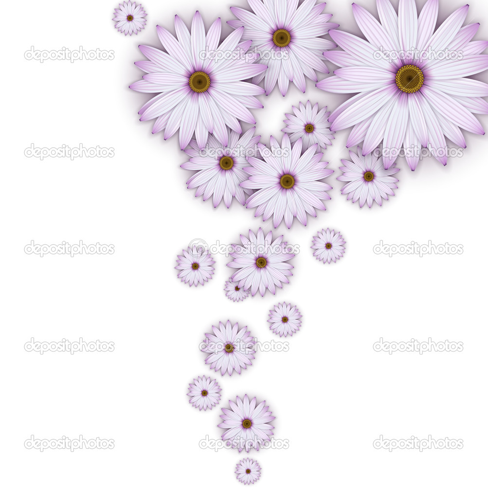 Field of purple daisy flowers stock vector svetlaboro 20012149 field of purple daisy flowers stock vector izmirmasajfo