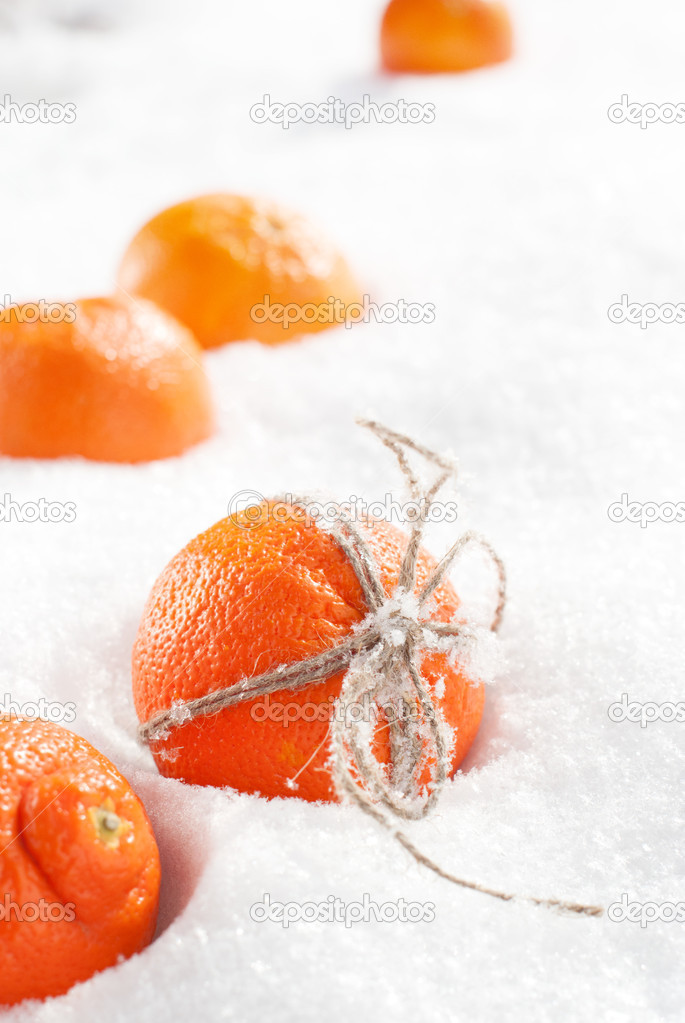 christmas oranges at the snow photo by olgapink - Christmas Oranges