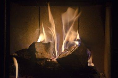Wood-burning stove home.