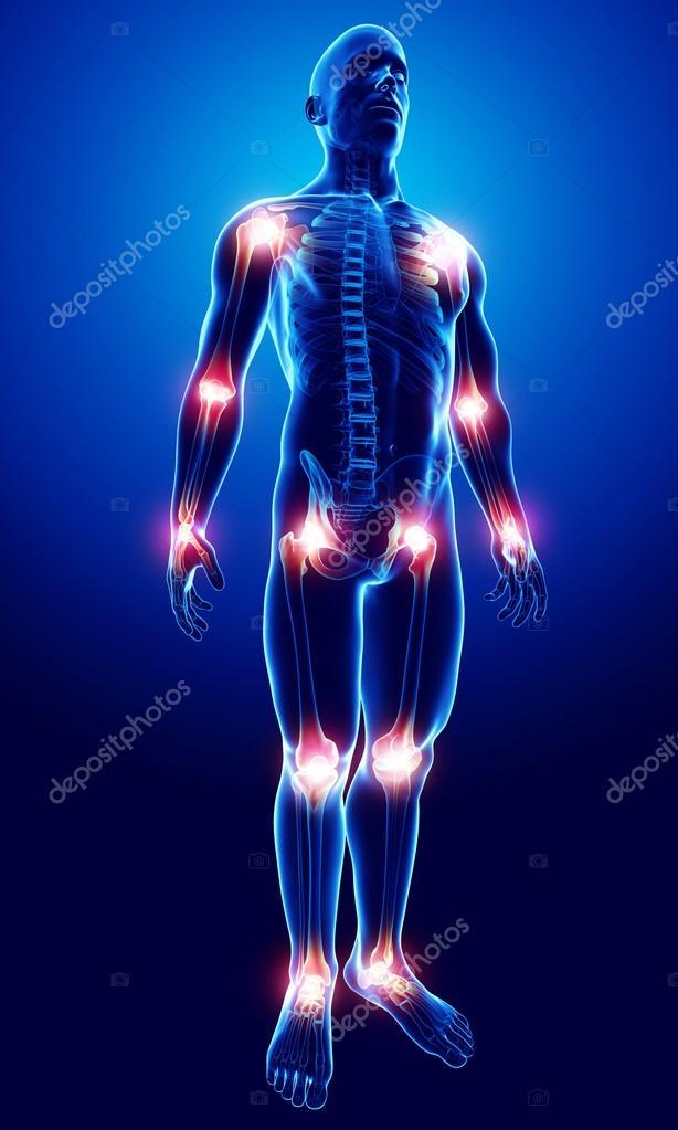 joint pain antomy