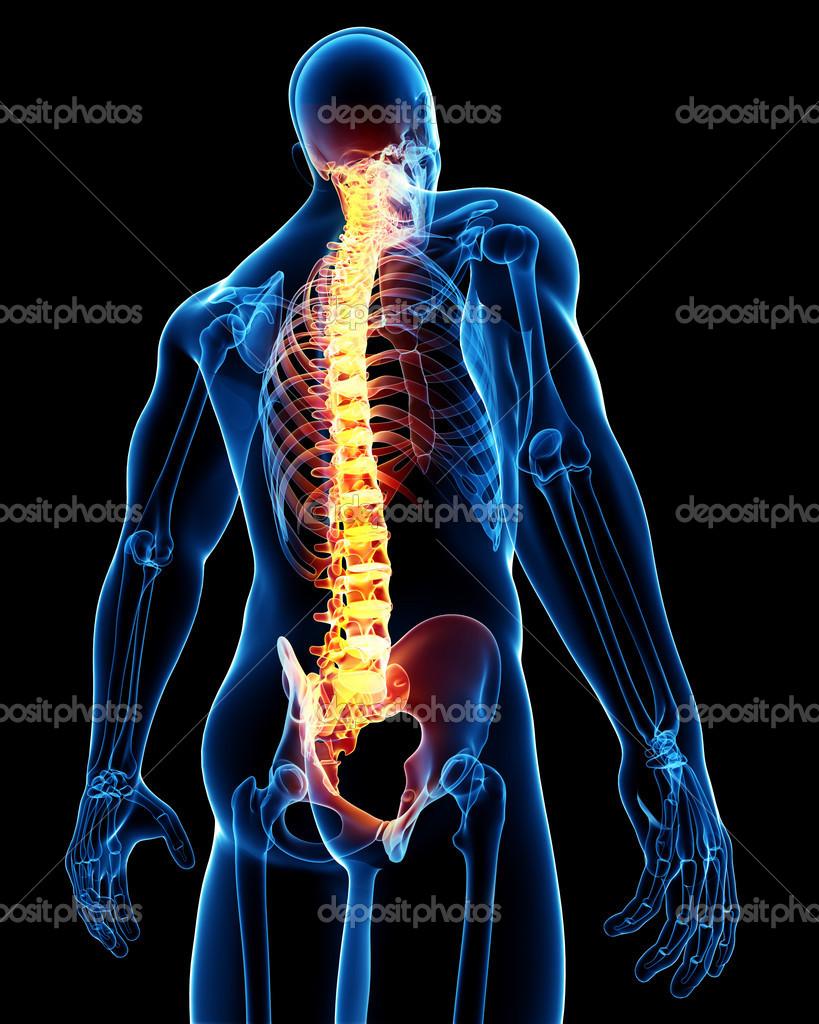 Back pain anatomy — Stock Photo © pixologic #23689999
