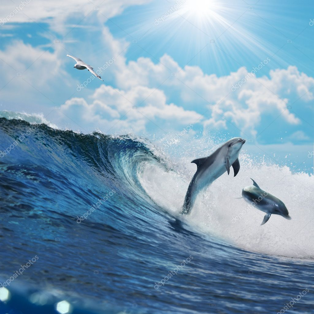 two happy playful dolphins jumping on breaking wave