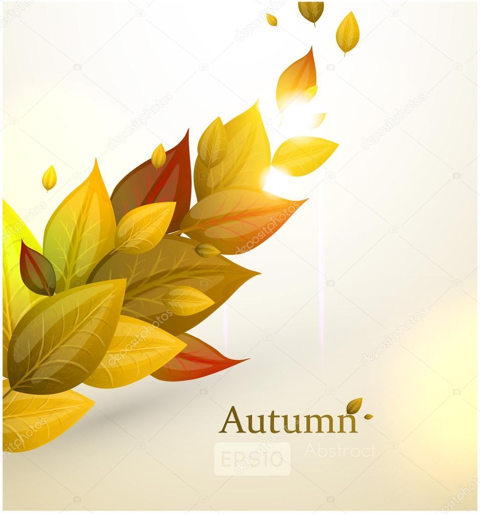 Vector hojas cayendo hojas de fondo oto o oto o cayendo - Descargar autumn leaves ...
