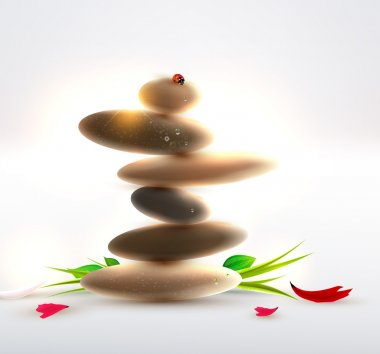 Spa still life with zen stone, leafs, flower petals and ladybird
