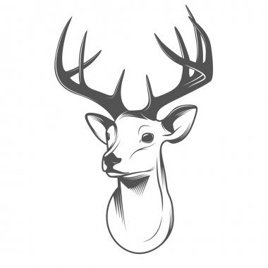Deer head isolated on white background stock vector