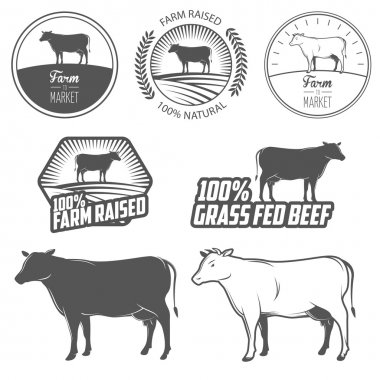 Set of beef labels, badges and design elements