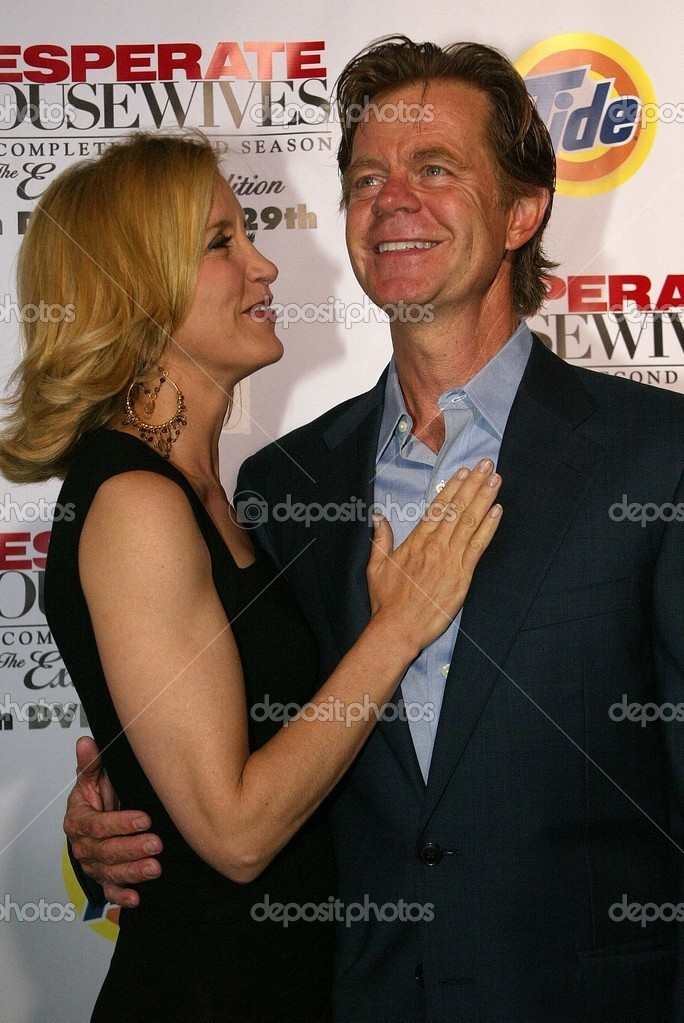 Desperate Housewives Season 2 Dvd Launch Party Stock Editorial Photo C S Bukley 16461699 It's a place where you know all your neighbors and your neighbors know all about you. https depositphotos com 16461699 stock photo desperate housewives season 2 dvd html