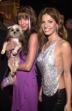 Tracy Kay Wolfe and Shannon Elizabeth