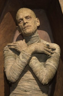 Wax Figure Mummy
