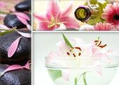 lázeňské léčby koláž ze tří různých obrázků