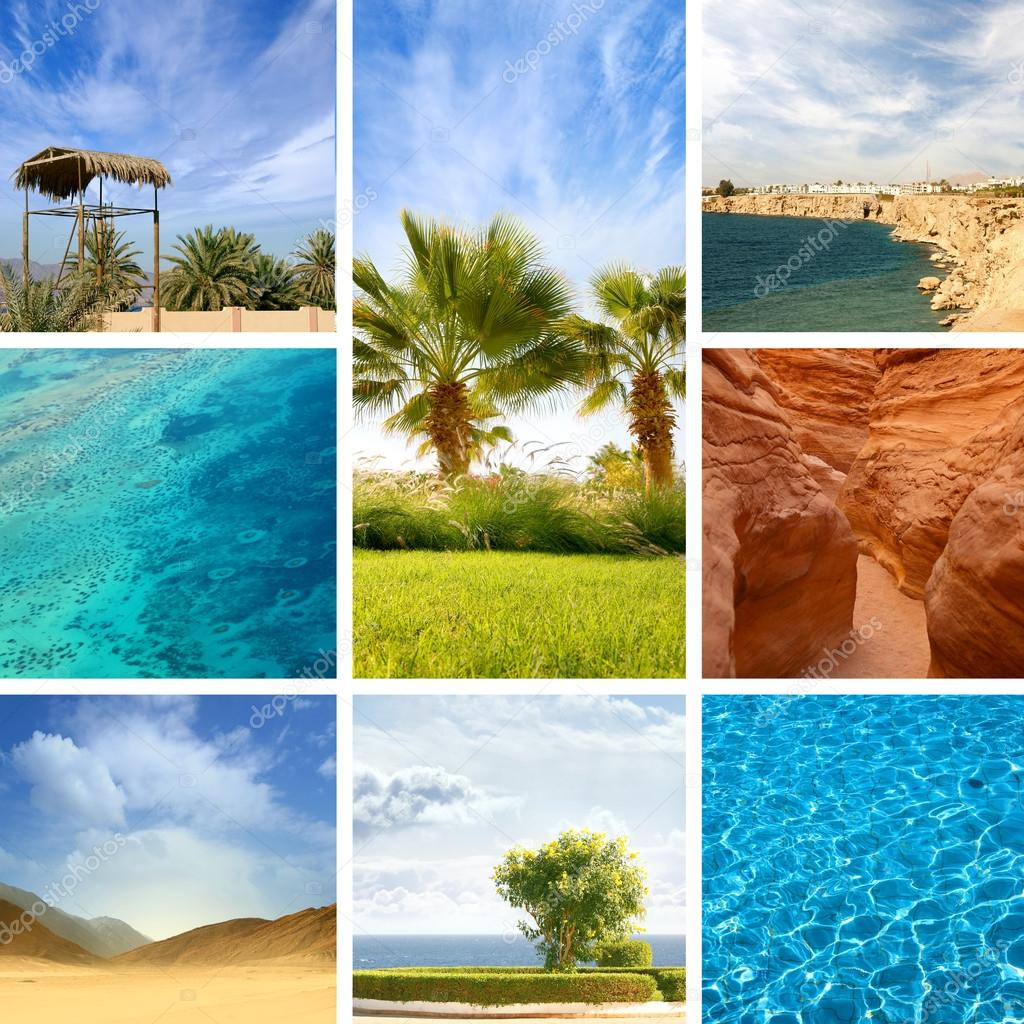 Nature of Egypt