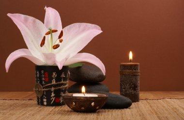 Oriental spa set over dark background