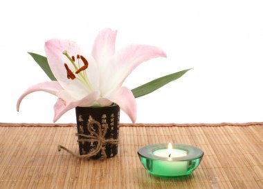 Japanese bowl with flower over white background