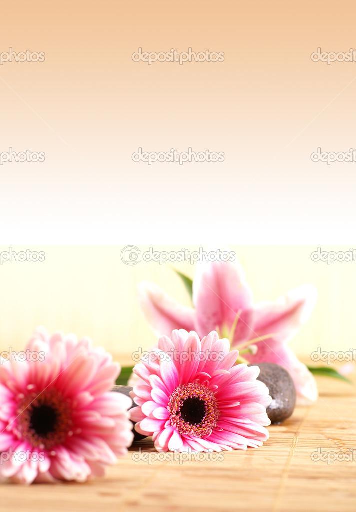 spa background stock photo shmeljov 16166351