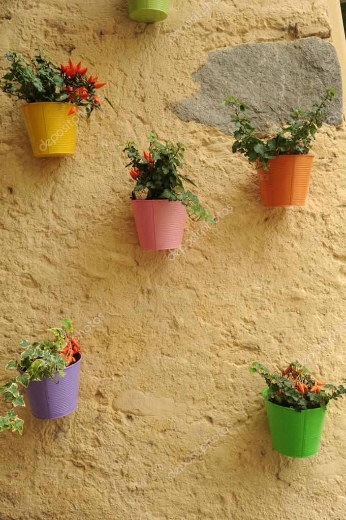 Blumentopfe An Der Wand Stockfoto C Fotoember 32008005