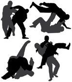 Photo Judo Silhouette