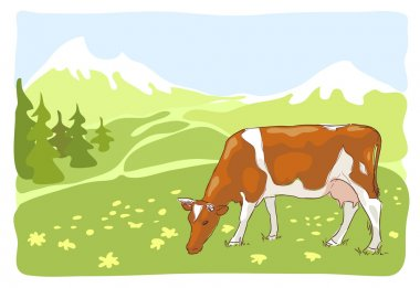 The white and red cow is grazed on the Alpine meadow. Vector illustration. stock vector