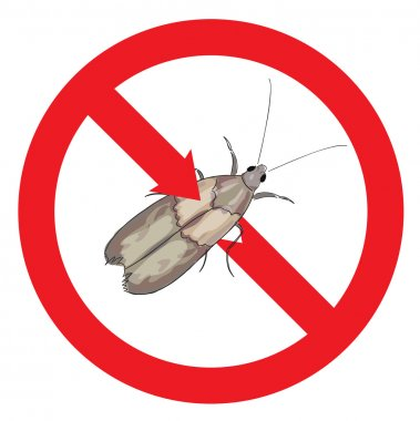 Moth pest is prohibited.