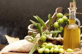 Fotografia olivo e olio