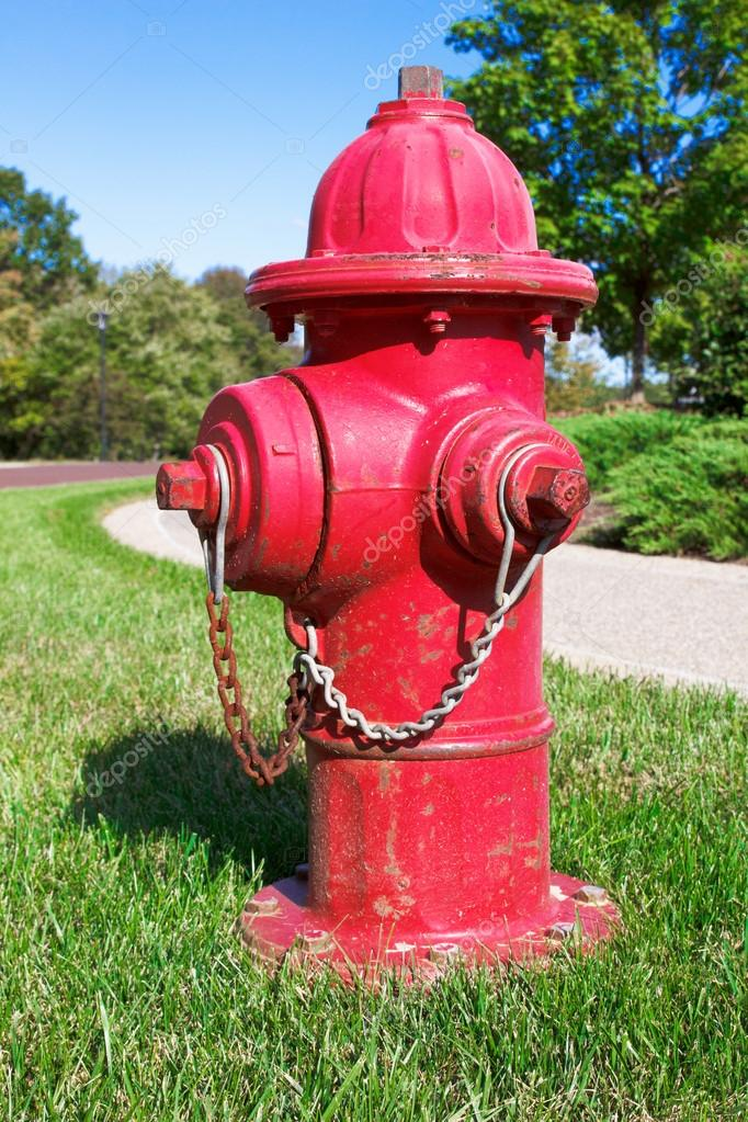 Red fire hydrant on green grass