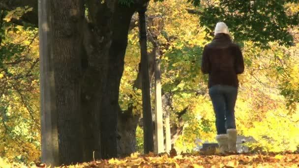 žena chodí po cestě plné spadané listí v Portlandu oregon zaparkovat.