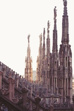 Detail of gothic cathedral of Milan. Italy