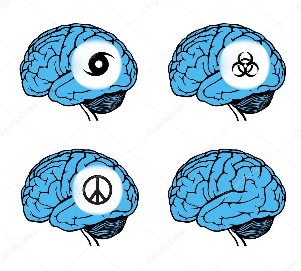 modelo del cerebro humano — Archivo Imágenes Vectoriales © spirit ...