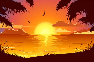 Romantic tropical sunset stock vector