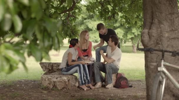 skupina čtyř vysokoškolských studentů dělá domácí práce v parku