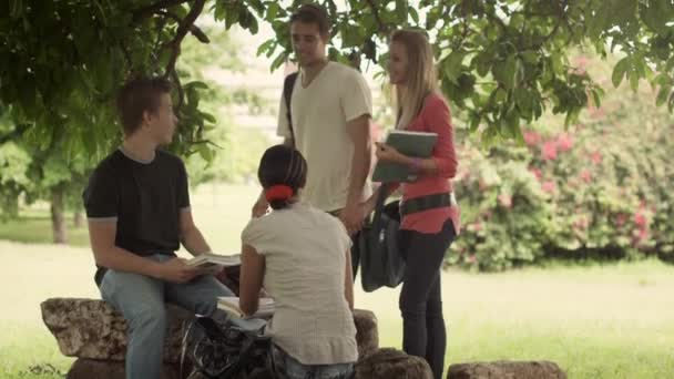 přátele, skupina čtyř vysokoškolských studentů setkání