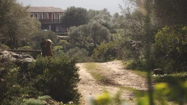 Stařec kavkazské koni v plné rychlosti na trati prach