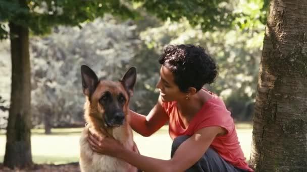 dívka v práci jak pes sitter s alsaské psa v parku