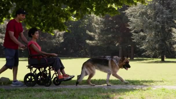 muž a zakázáno žena na vozíku s relaxační alsaské psa v parku