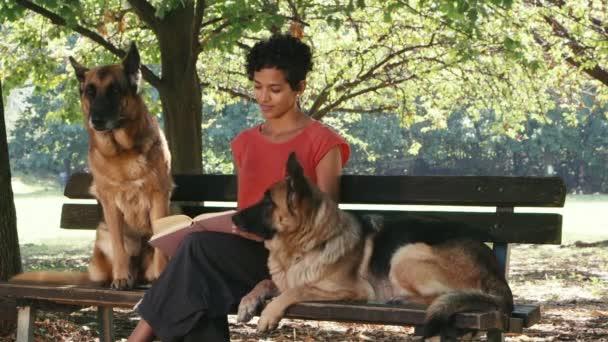 dívka v práci jako pes sitter alsaské psy v parku, čtení knih a relaxaci
